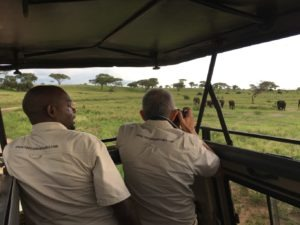 Tanzania Specialist Guides nehmen Fotos von Elefanten im Tarangire Nationalpark