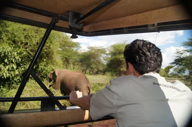 Tanzania Specialist auf Safari im Ruaha Nationalpark